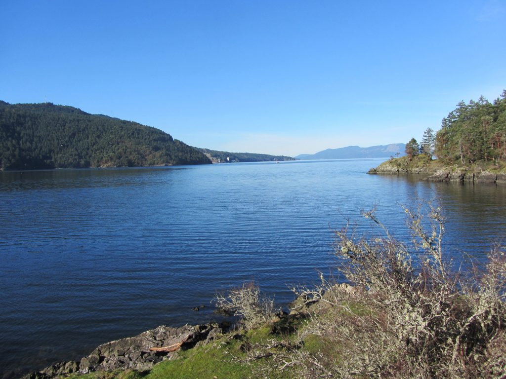 The view of Saanich Inlet from McKenzie Bight