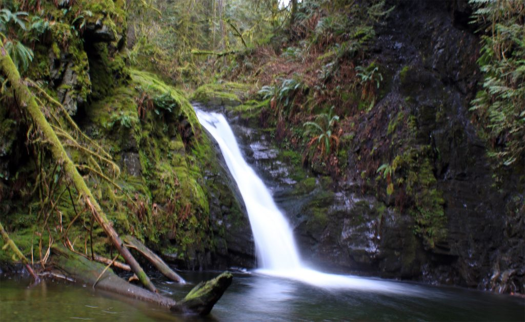 Upper Goldstream Falls