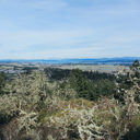 The view from the top of Bear Hill looking north over Saanich and northeast towards Haro Strait.