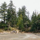 The beach area where the trail exits from the forest at Coles Bay Regional Park.