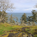 The viewpoint looking out to the Strait of Juan de Fuca in Devonian Regional Park