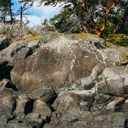 A Petroglyph carved into the rock near Alldridge Point in East Sooke Park.