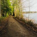 The trail along the western shore of Elk Lake.