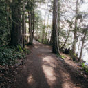The forested trail along the north end of Elk Lake.