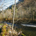 The Goldstream River near the day-use area in Goldstream Provincial Park.