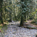 The rocky creek bed is relatively dry most of the year in Goldstream Provincial Park.