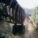 A view from the trail of the trestle bridge in Goldstream Provincial Park.