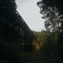 A view under the trestle bridge in Goldstream Provincial Park.