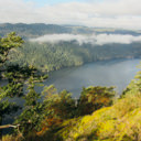 A view high above the Saanich Inlet from Jocelyn Hill via the Caleb Pike route.