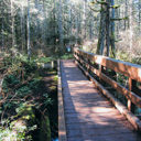 The wooden bridge over Pease Creek in Gowlland Tod Provincial Park.