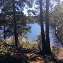 A view of Matheson Lake between the trees along the lake loop trail