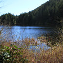 A view of Matheson Lake from the far end of the lake