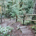 The steep Cascade Trail down to McKenzie Bight in Gowlland Tod Provincial Park.