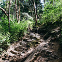 A steep section of the trail to Mount Finlayson that passes over lots of loose rock.