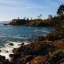 The forest of the Coppermine Trail becomes more lush as you approach the coast in East Sooke Park.