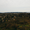 The view of Victoria from the top of Mount Tolmie.
