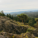 The view near the top of Mount Work looking over the Saanich region.