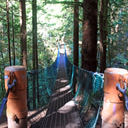 The suspension bridge crossing over Pete Wolfe Creek along the Juan de Fuca Trail