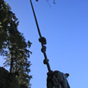The rope swing dangles from a tree high above along Mystic Beach