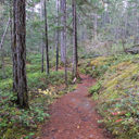 The hiking trail in Spectacle Lake Provincial Park