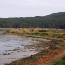 The shoreline along Whiffin Spit in Sooke, BC