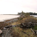 The beach area along Whiffin Spit along the shores of the Strait of Juan de Fuca